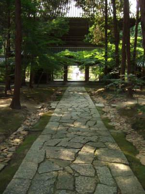 曹源寺の境内