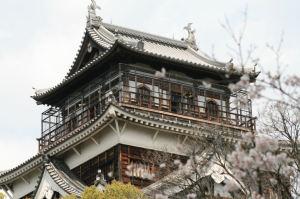 広島城の桜