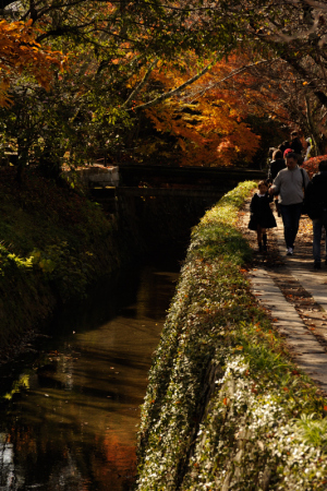 京都 紅葉 詩仙堂 2014秋